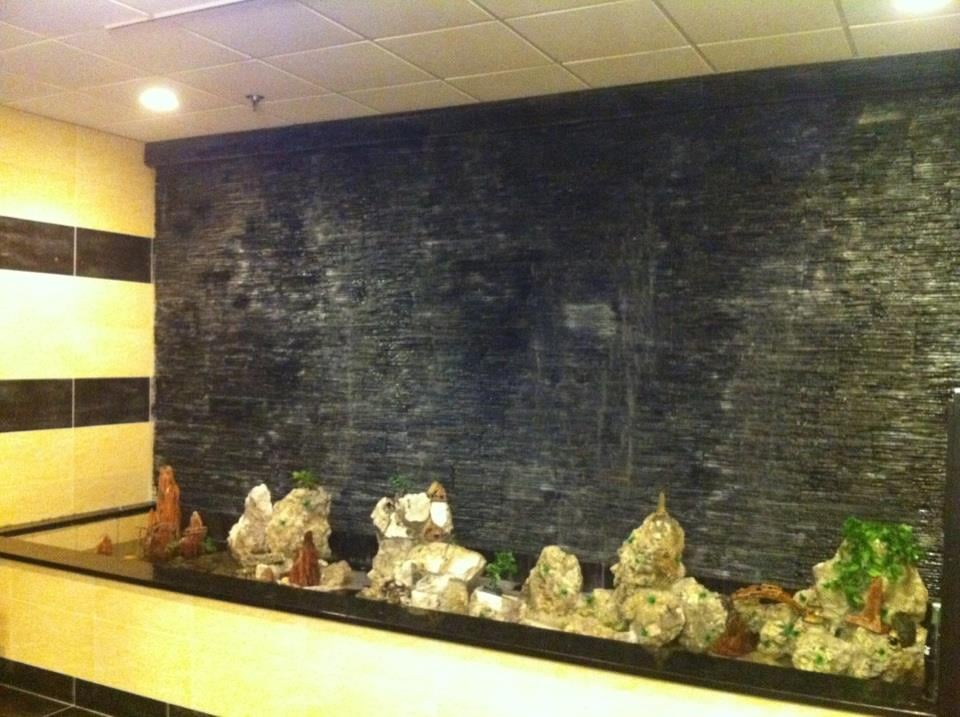 Super world buffet 39 s new fish pond yelp for Fish buffet near me