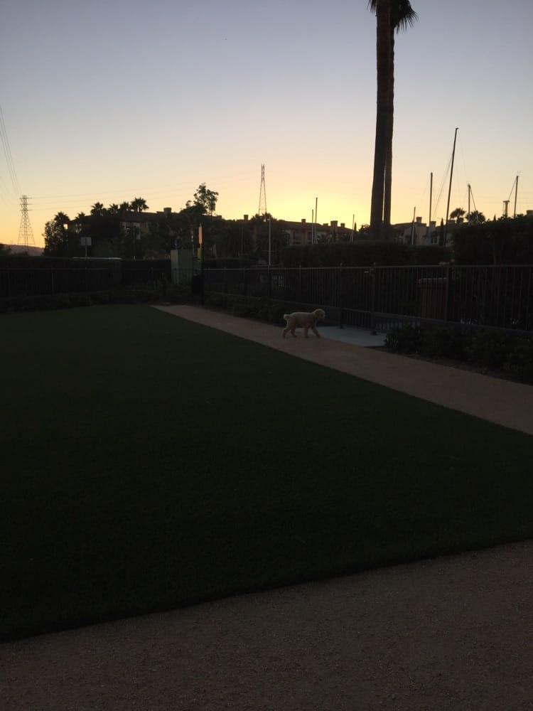 Dog Parks In Redwood City Ca