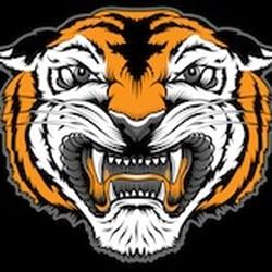 678e9d981 Photo of Iron Tiger Tattoo - Columbia, MO, United States. Iron Tiger Tattoo