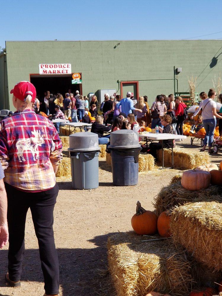 Rocky Mountain Pumpkin Ranch Inc