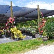 Nice Sanctuary Gardens Has A