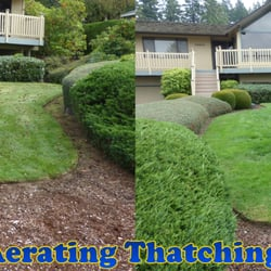 Aerating Thatching Co 18 Photos 24 Reviews Landscaping 6920