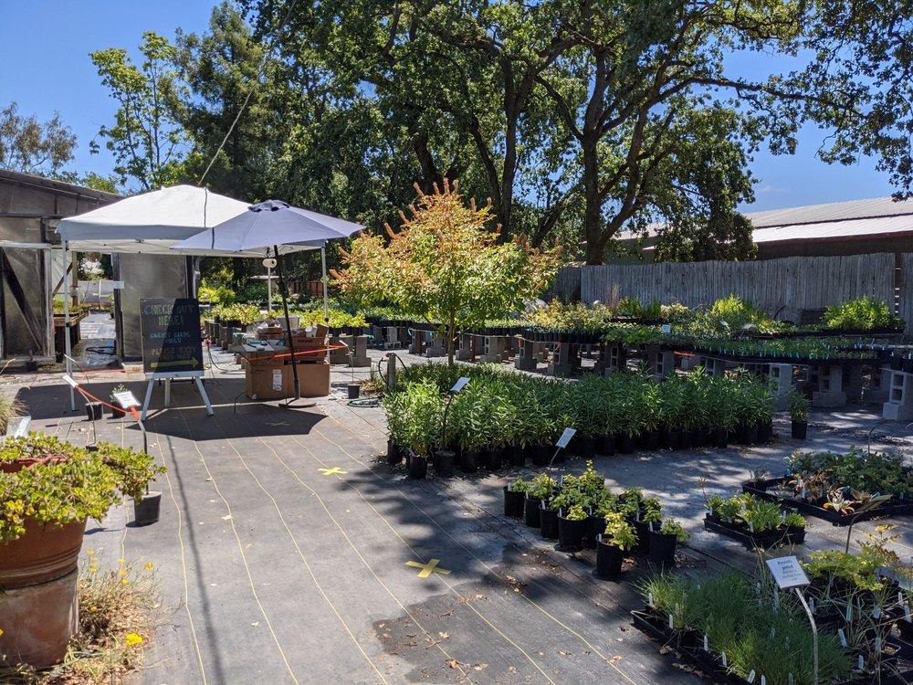 California Flora Nursery: 2990 Somers St, Fulton, CA