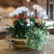 Reception Area Photo Of Botanika Interior Plantscapes   San Diego, CA,  United States.