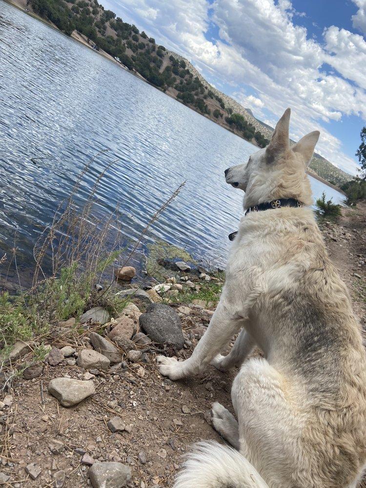 Bear Canyon Reservior Wildlife Area: Bear Canyon Lake Rd Turn off NM35, Hanover, NM