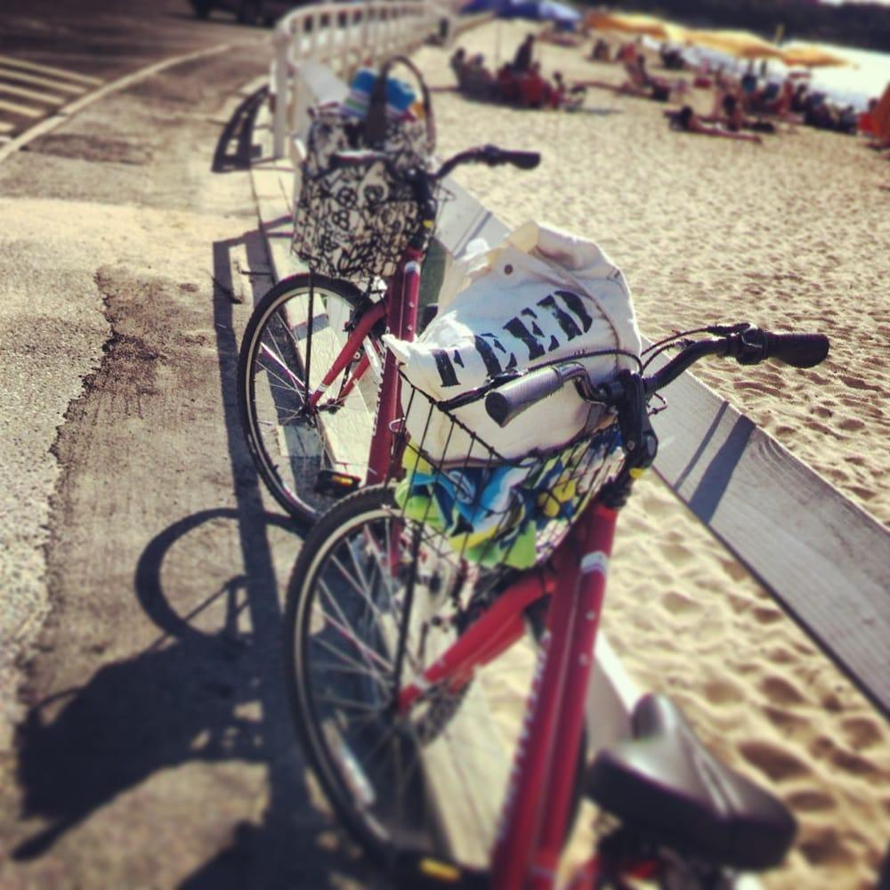 Piccozzi's Bike Shop