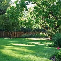 Clean Air Lawn Care - Landscaping - Durham, NC - Phone ...