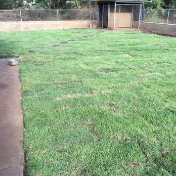Turfgrass Hawaii - 24 Photos & 12 Reviews - Landscaping - 86-509 ...
