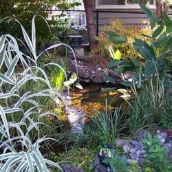 Photo Of Lucca Statuary   Seattle, WA, United States. Pond With Lucca Column