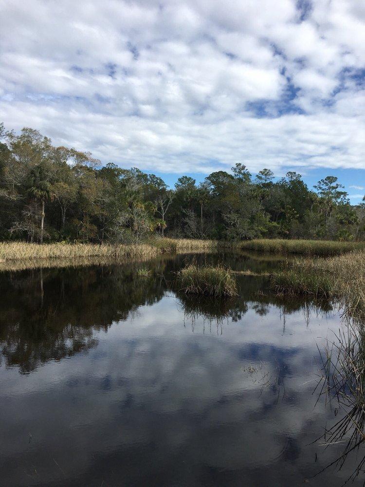 Treasure Camp Trading Post Inc: 15249 NW 46th Ln, Chiefland, FL