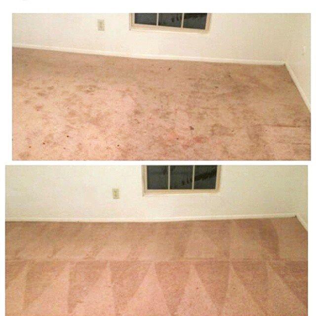 Grant Carpet Cleaning: Hamtramck, MI
