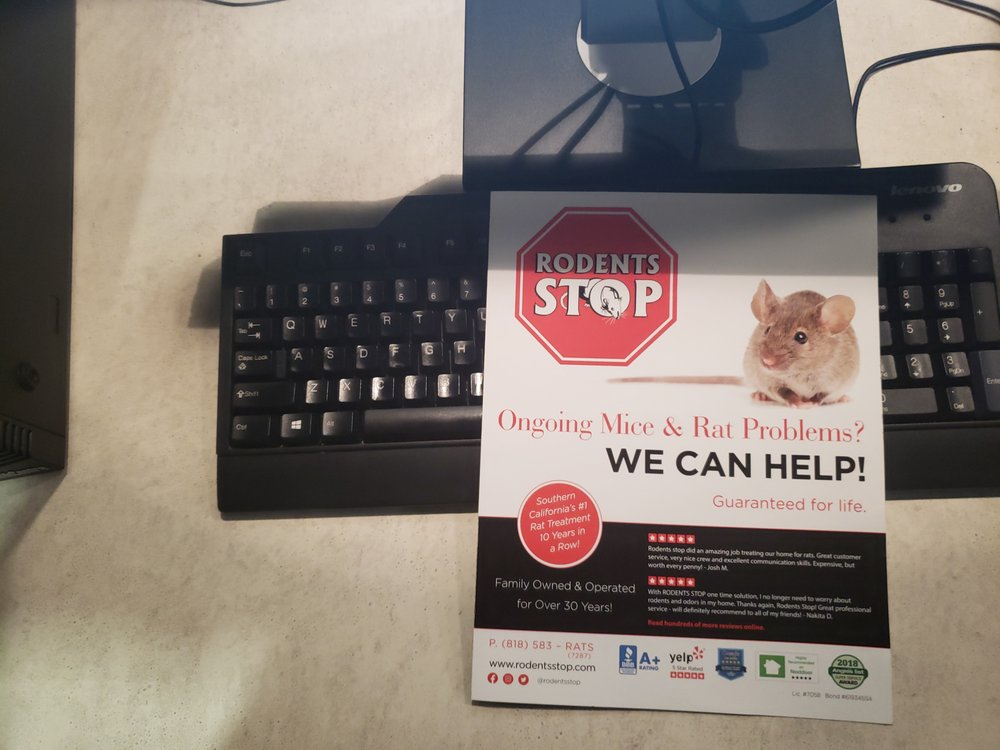 Rodents Stop - 7647 Havenhurst Ave, Van Nuys, Van Nuys, CA