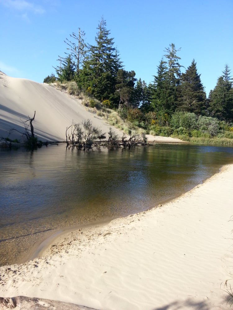 Spinreel Campground: 9401-9469 Wildwood Dr, North Bend, OR