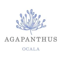 Agapanthus Home Decor Ocala Fl Photos Phone Number Yelp