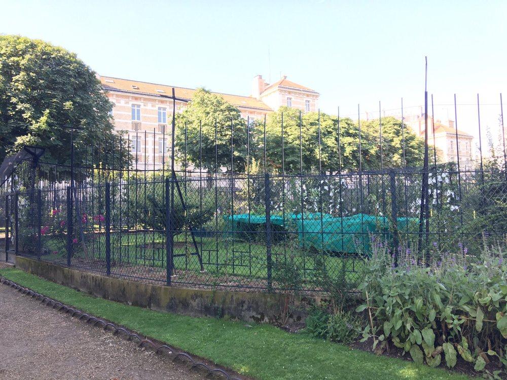 Un jard n cerrado en un jard n enorme todo muy normal for Piscine jardin du luxembourg