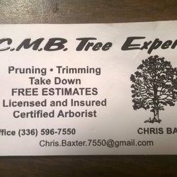 Photo Of CMB Tree Experts