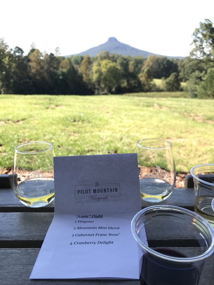 Pilot Mountain Vineyards & Winery: 1162 Bradley Rd, Pinnacle, NC