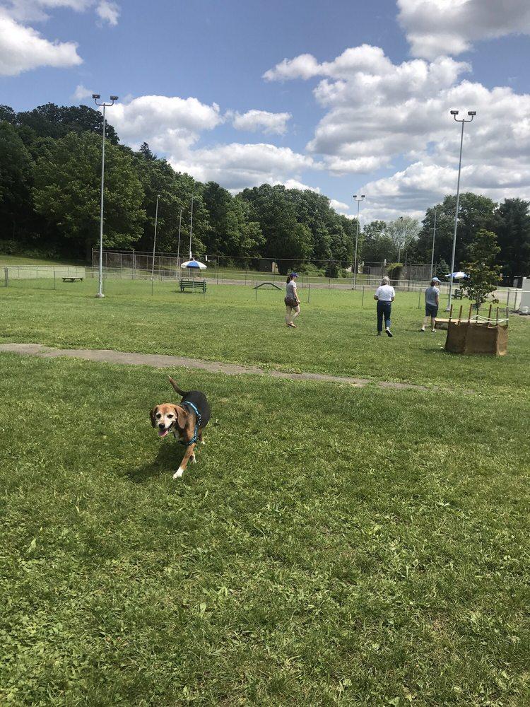 Craig Park Dog Park: 456 W High St, Painted Post, NY