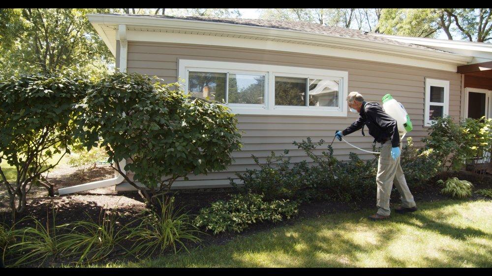 Best Pest Control: 440 W Colfax St, Palatine, IL