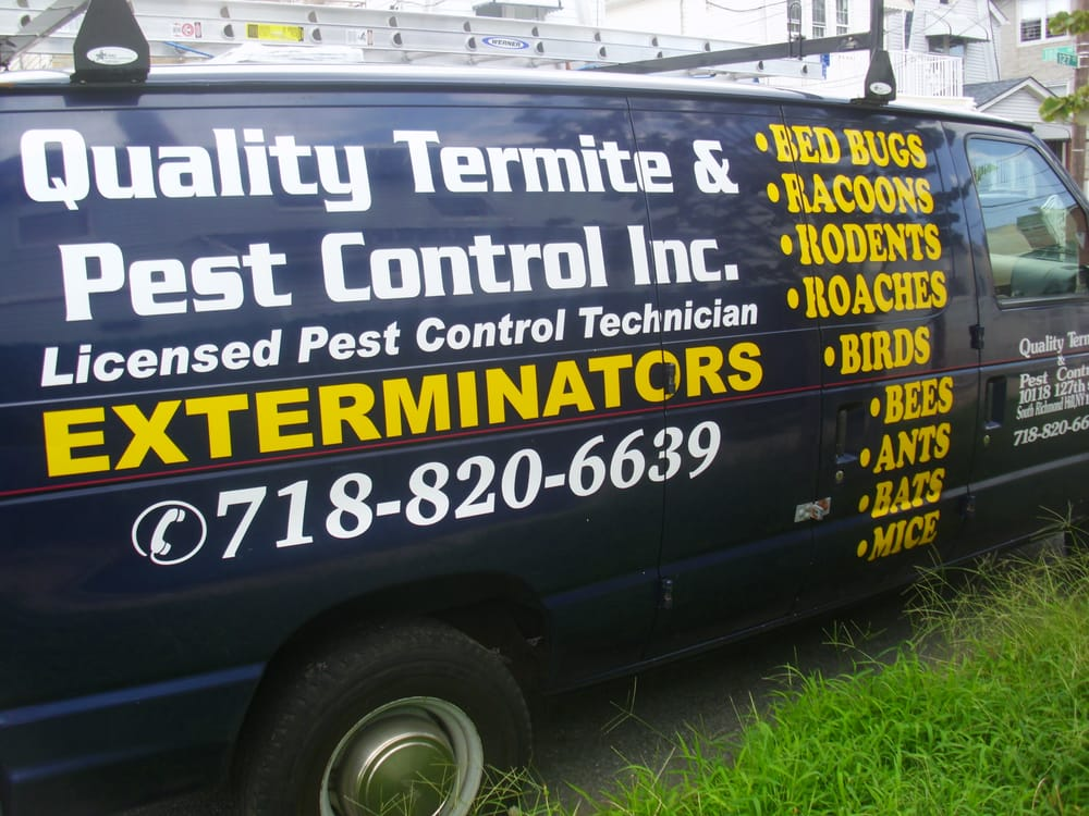 The Pest Control Service You Deserve Yelp