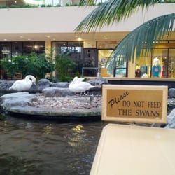 Embassy Suites By Hilton Palm Beach Gardens Pga Boulevard 27 Photos 30 Reviews Hotels
