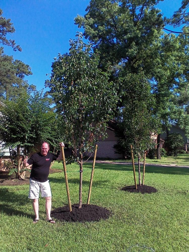 Photo Of Tex Tree Nurseries Houston Tx United States