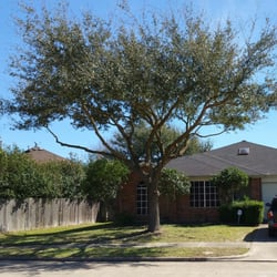 Photo Of Garcia S Professional Tree Service Houston Tx United States