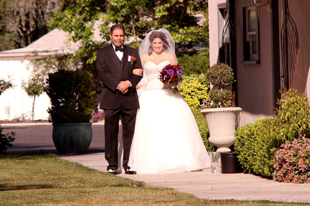 Professional Wedding DJ and MC - Walk Down the Aisle to Your Own