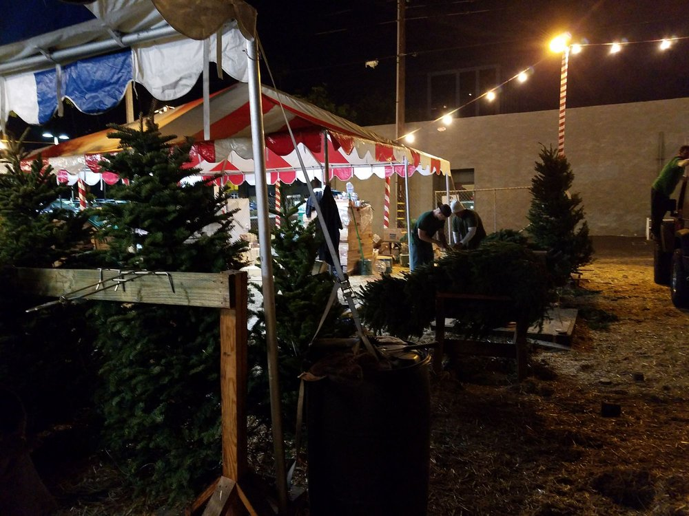 Photo of Delancey Street Christmas Tree Lot - Santa Monica, CA, United  States - Photos For Delancey Street Christmas Tree Lot - Yelp