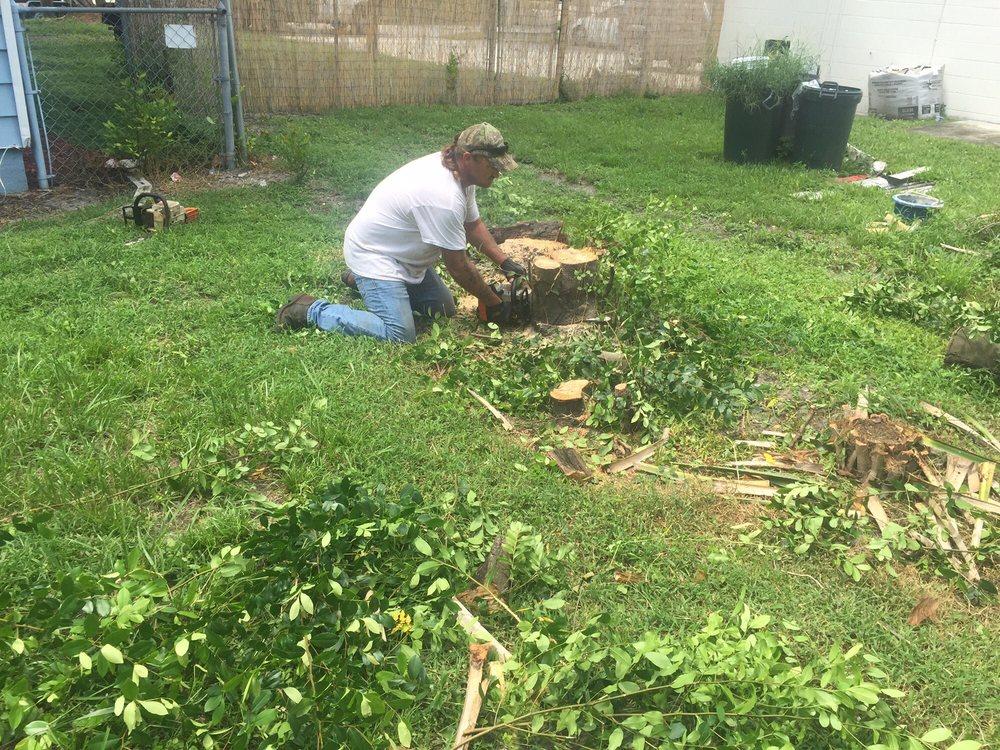 Beavers Tree Service: 8841 Bliss Rd, Gibsonton, FL