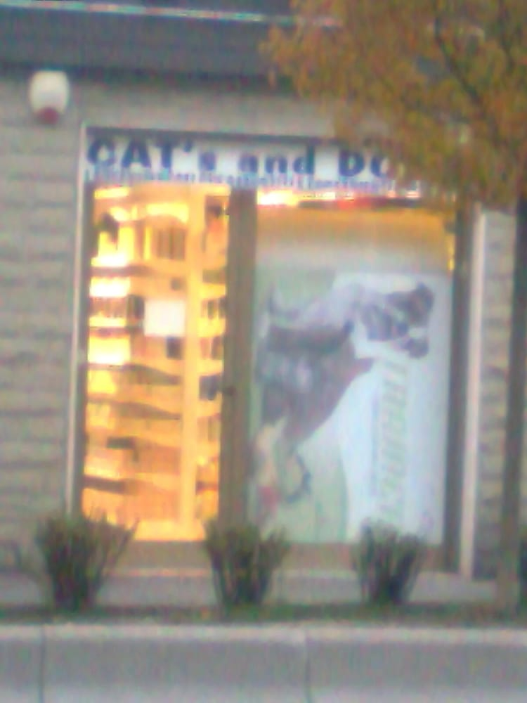 Cat S And Dog S Supermarket Firenze