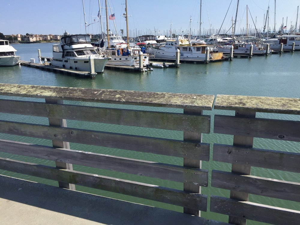 Emeryville Marina - 111 Photos & 26 Reviews - Marinas - 3310