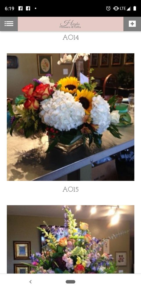 High's Flowers and Gifts: 241 N 13th St, Abilene, TX