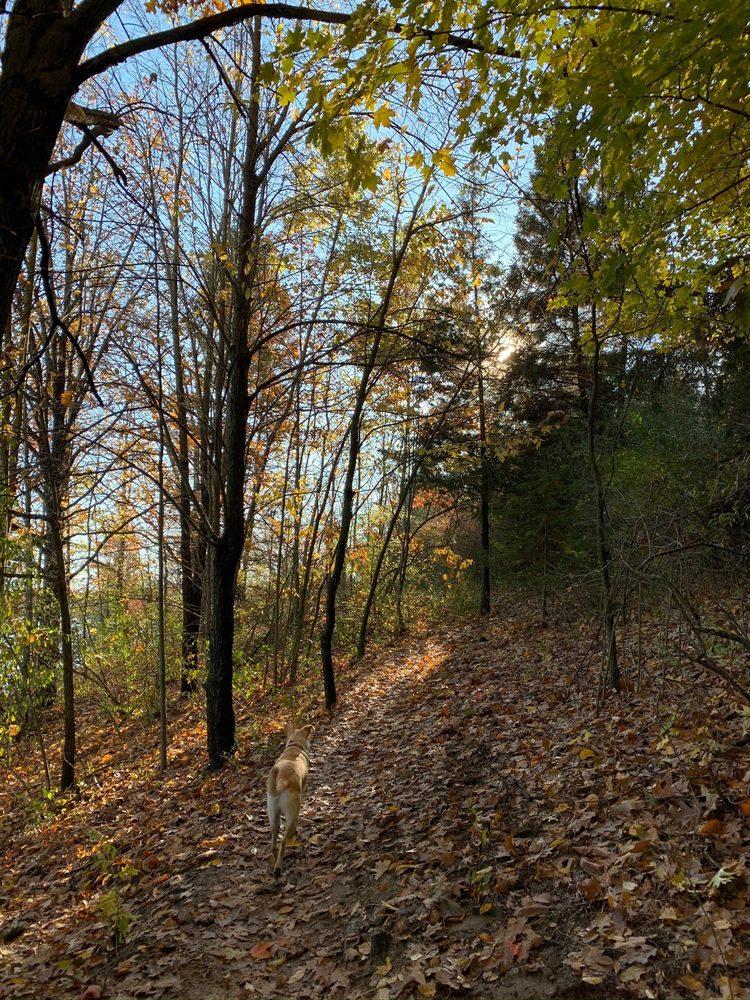 Sleepy Hollow State Park: 7835 Price Rd, Laingsburg, MI