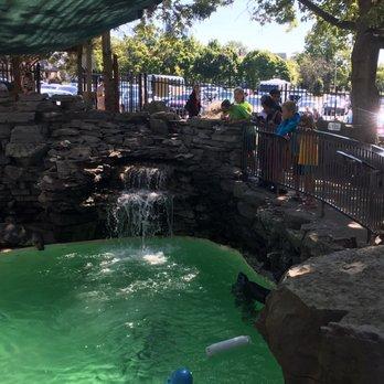 Aquarium Of Niagara 207 Photos 68 Reviews Aquariums