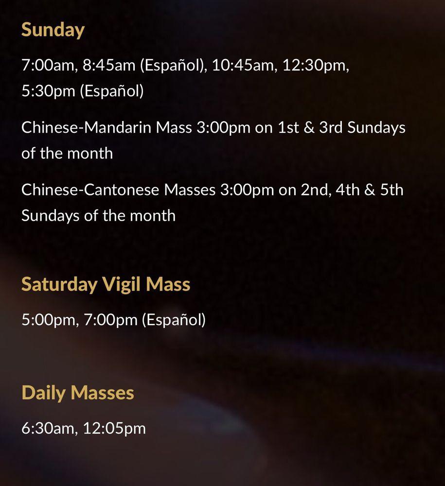 st. matthew catholic mass schedule. - yelp