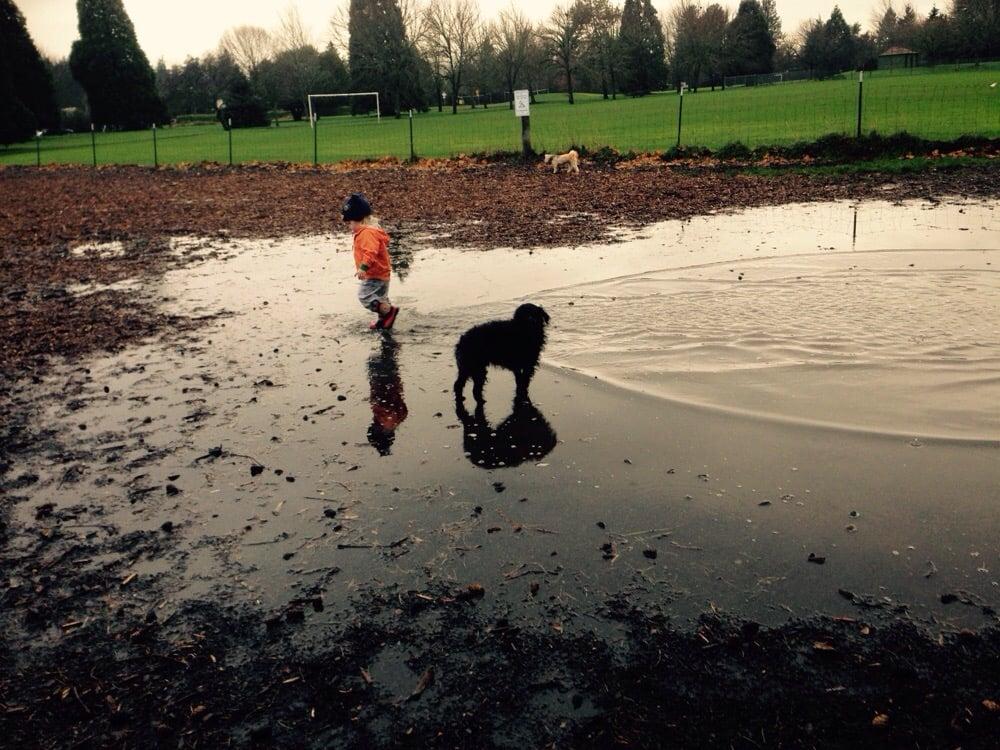 Brentwood Dog Park Portland