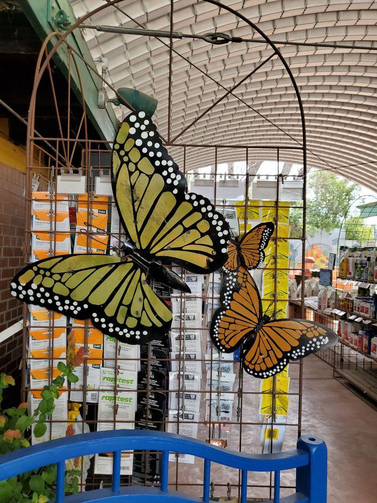 Harlow Gardens: 5620 E Pima St, Tucson, AZ