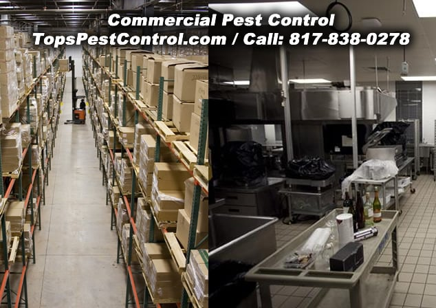 Tops Termite & Pest Control