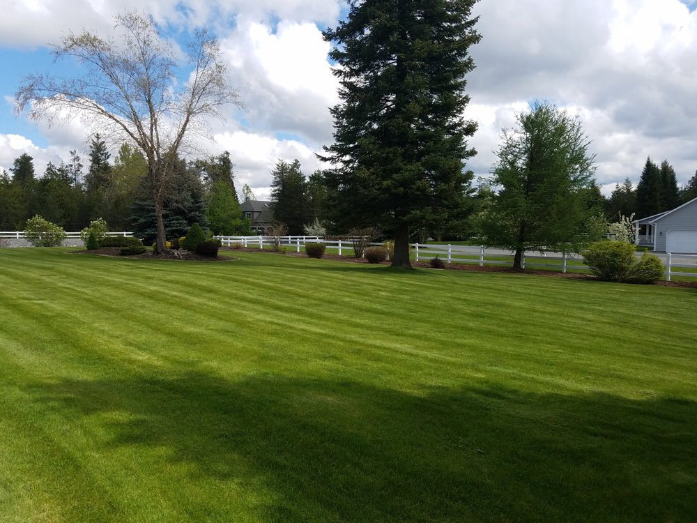 Taylor-Made Lawn Care: Post Falls, ID