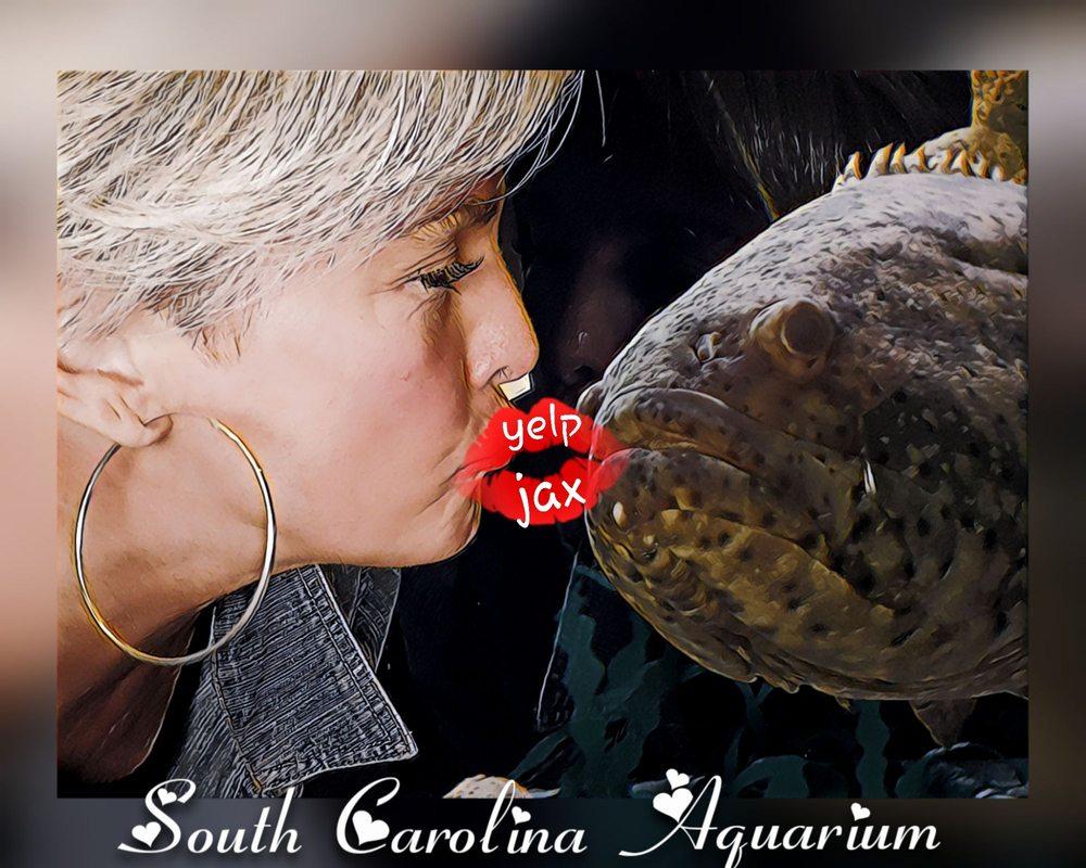 Photo of South Carolina Aquarium: Charleston, SC
