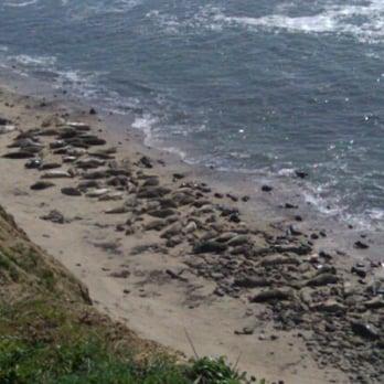 Photo Of Moss Beach Ca United States Not Rocks