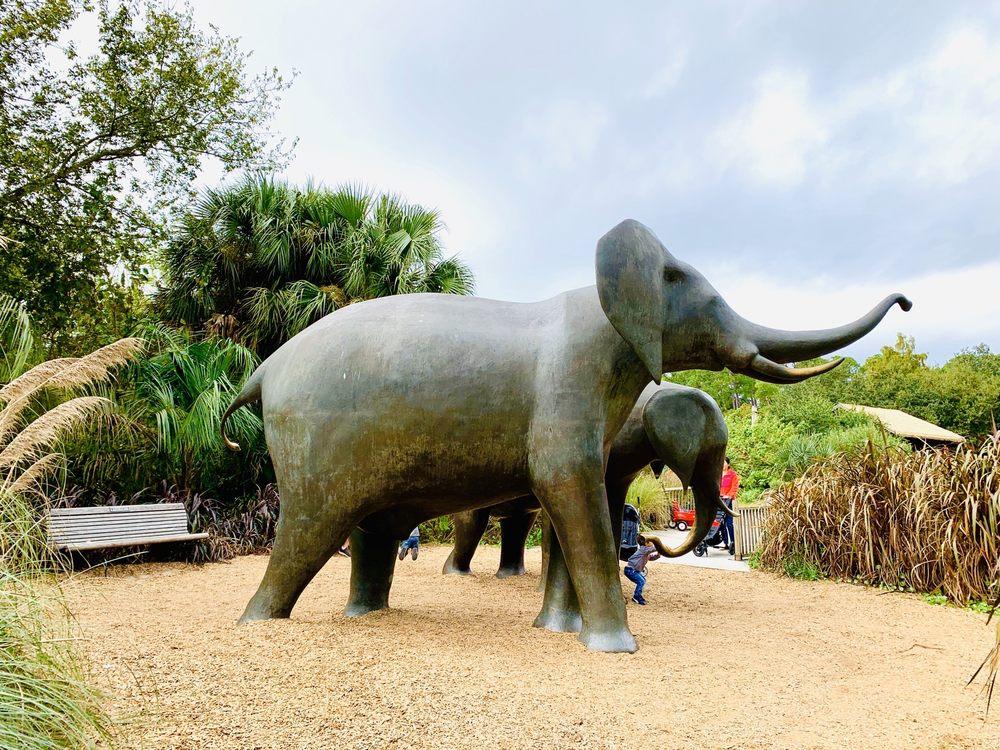 Jacksonville Zoo and Gardens: 370 Zoo Pkwy, Jacksonville, FL