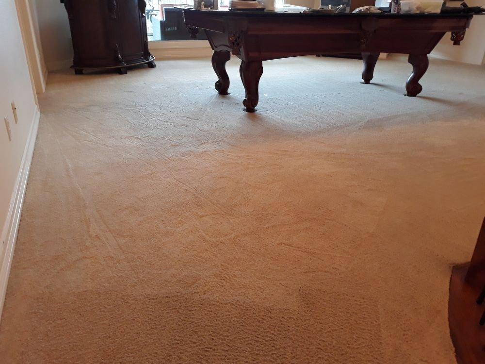 Harper Carpet Care