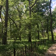 Austin Gardens 15 Photos Parks 167 Forest Ave Oak