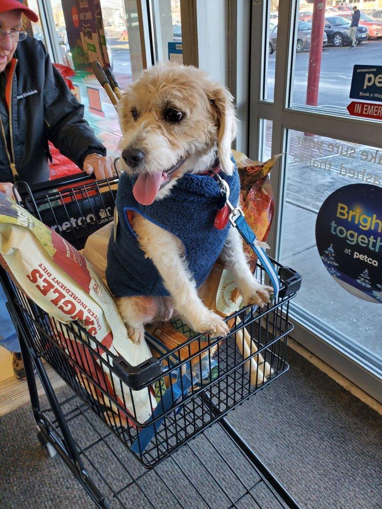 Spots Dog Grooming: 878 E Ridge Rd, Rochester, NY