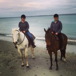 Newport Equestrian Academy Amp Carriage Company Horseback