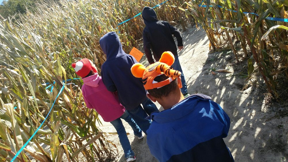 Cornfield of Terror at R & J Farm