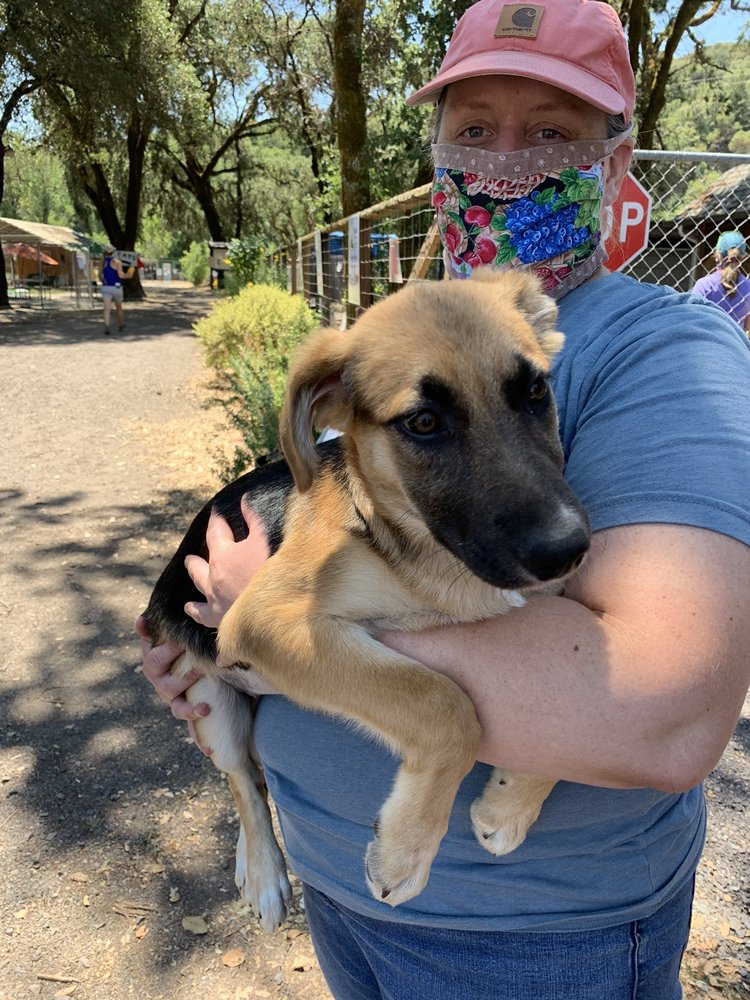 Humane Society For Inland Mendocino County: 9700 Uva Dr, Redwood Valley, CA