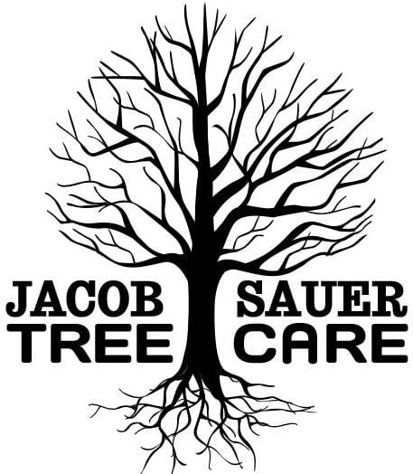 Jacob Sauer Tree Care
